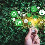 Így támogathatja a fenntartható fejlődést