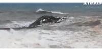 Videó: Olaszországban a viharos tenger egyszerűen lezúzott egy mólót