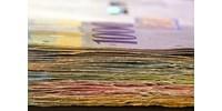 Márciustól már helyi adókat is be lehet fizetni a Díjneten
