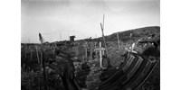 Ez az egyik legerősebb kép az első világháborúról