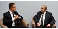 Mintha csak lemásolta volna a Fideszt a vajdasági szövetségese