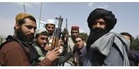 A tálibok már szinte könyörögnek bármilyen külföldi segítségért