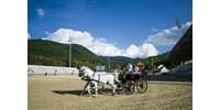 Hiába építettek Mészárosék lovas stadiont, harmadháznál többen nem voltak ott